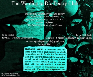 Wanting to Die Poetry Club