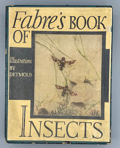 """Fabre's Book of Insects Retold from Alexander Teixeira De Mattos' Translation of Fabre's """"Souvenirs Entomologiques"""" by Mrs. Rodolph Stawell. Jean-Henri Fabre, E. J. Detmold, Edward."""