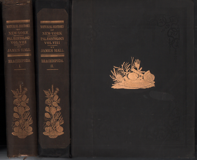 Palaeontology: Volume VIII. An Introduction to the Study of the Genera of Palaeozoic Brachiopoda Parts 1 and 2 (2 volumes)- Geological Survey of the State of New York. James Hall, John M. Clark.