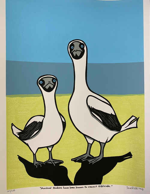 """Signed, Limited Edition Poster by Artist Leia Bell: """"Masked Boobies have been known to commit siblicide."""" Leia Bell."""