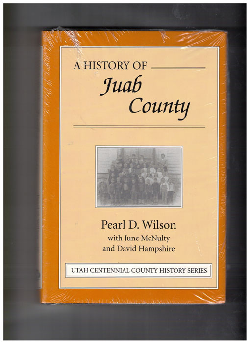 A History of Juab County. Pearl D. Wilson, June McNulty, David Hampshire.