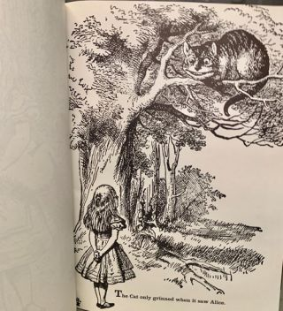 The Colorful Alice in Wonderland (Coloring Book)